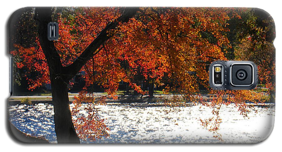 Landscape Galaxy S5 Case featuring the photograph Lakewood by Steve Karol