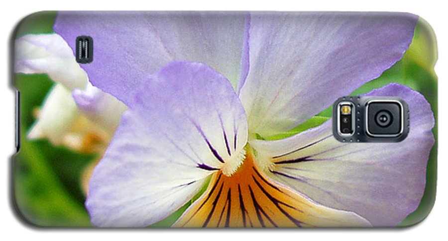 Pansy Galaxy S5 Case featuring the photograph Lavender Pansy by Nancy Mueller