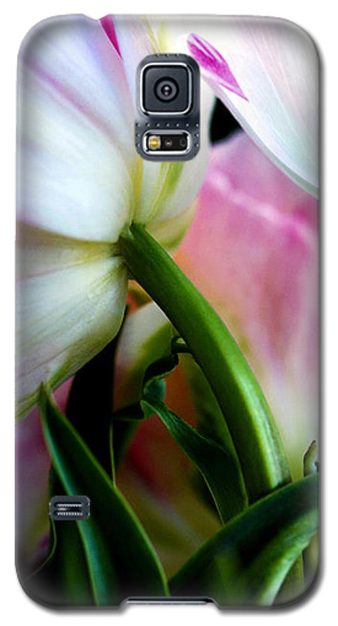 Flower Galaxy S5 Case featuring the photograph Layers Of Tulips by Marilyn Hunt