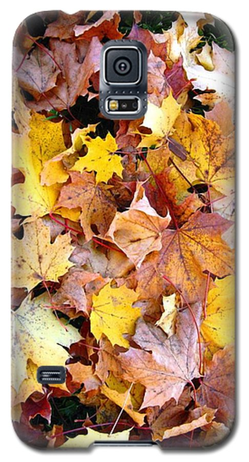 Leaves Galaxy S5 Case featuring the photograph Leaves Of Fall by Rhonda Barrett