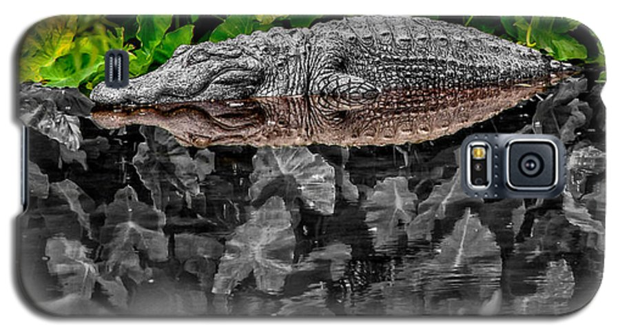American Galaxy S5 Case featuring the photograph Let Sleeping Gators Lie - Mod by Christopher Holmes