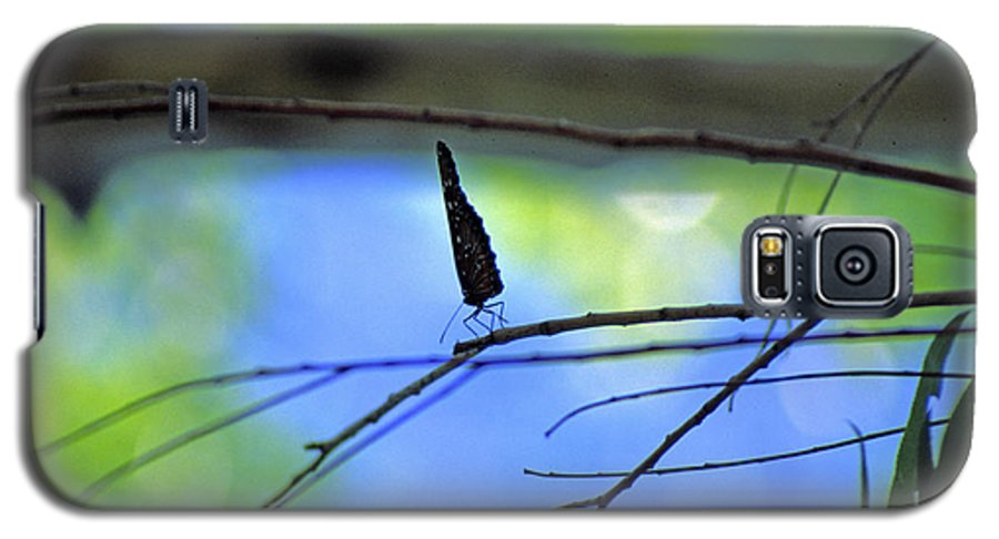 Butterfly Galaxy S5 Case featuring the photograph Life On The Edge by Randy Oberg