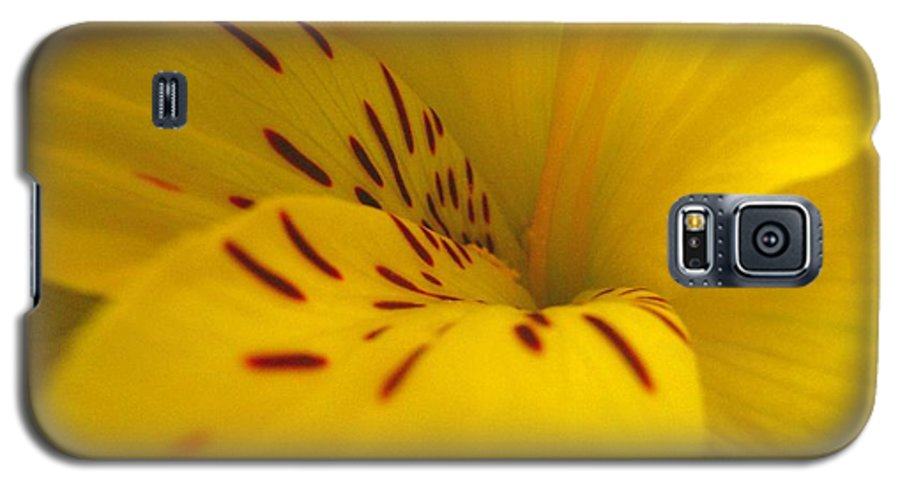Yellow Galaxy S5 Case featuring the photograph Lily by Rhonda Barrett