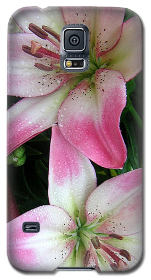 Nature Galaxy S5 Case featuring the photograph Lily Times Two by Lucyna A M Green