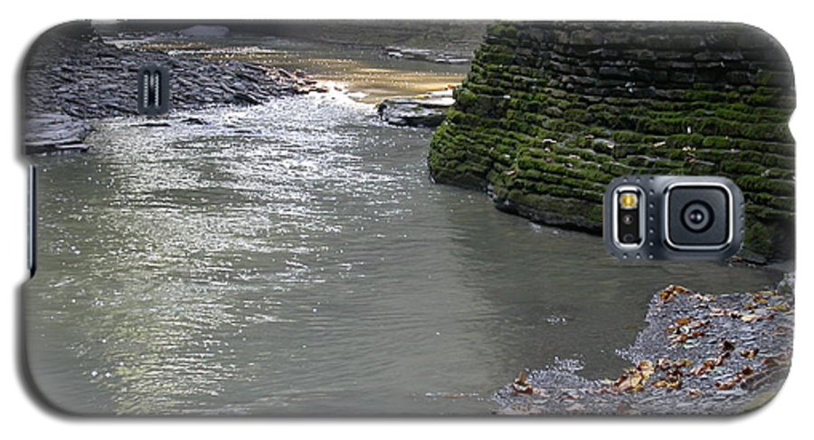 Watkins Glen Galaxy S5 Case featuring the photograph Little Ray Of Sunshine by Linda Murphy