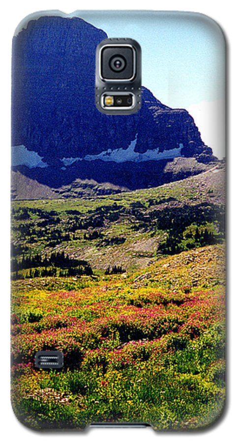 Glacier National Park Galaxy S5 Case featuring the photograph Logans Pass In Glacier National Park by Nancy Mueller