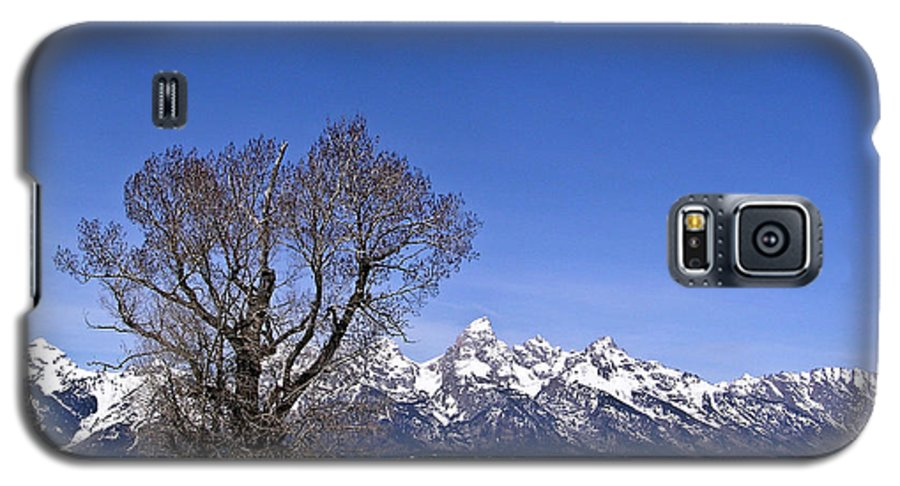 Tree Galaxy S5 Case featuring the photograph Lone Tree At Tetons by Douglas Barnett