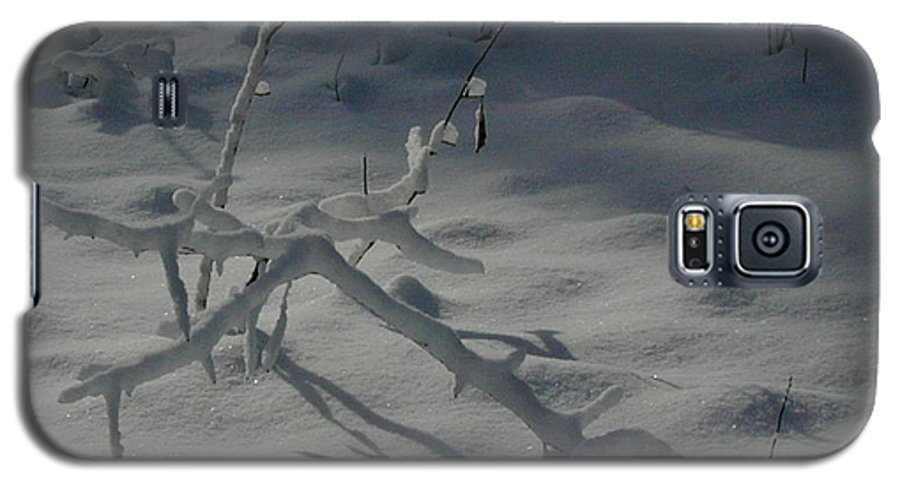 Loneliness Galaxy S5 Case featuring the photograph Loneliness In The Cold by Douglas Barnett