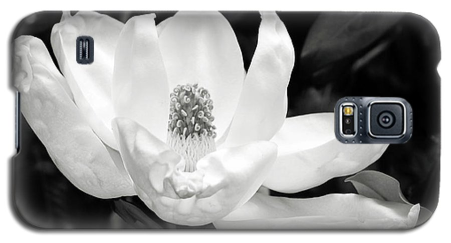 Magnolia Galaxy S5 Case featuring the photograph Magnolia Memories 3- By Linda Woods by Linda Woods