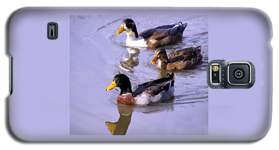 Duck Galaxy S5 Case featuring the photograph Mallards by Kenna Westerman