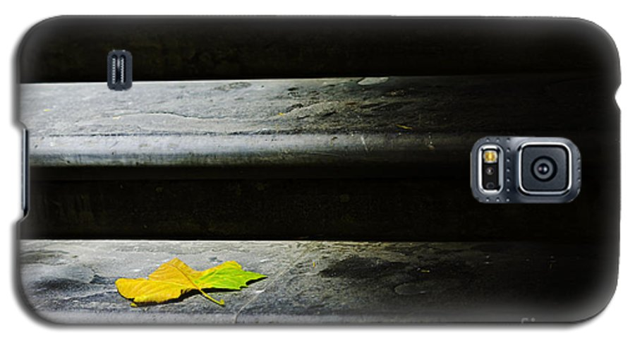 Maple Leaf Galaxy S5 Case featuring the photograph Maple Leaf On Step by Avalon Fine Art Photography