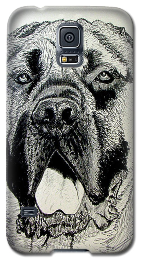Mastiff Galaxy S5 Case featuring the drawing Mastiff by Stan Hamilton