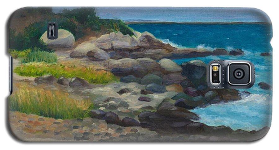 Landscape Galaxy S5 Case featuring the painting Meigs Point by Paula Emery