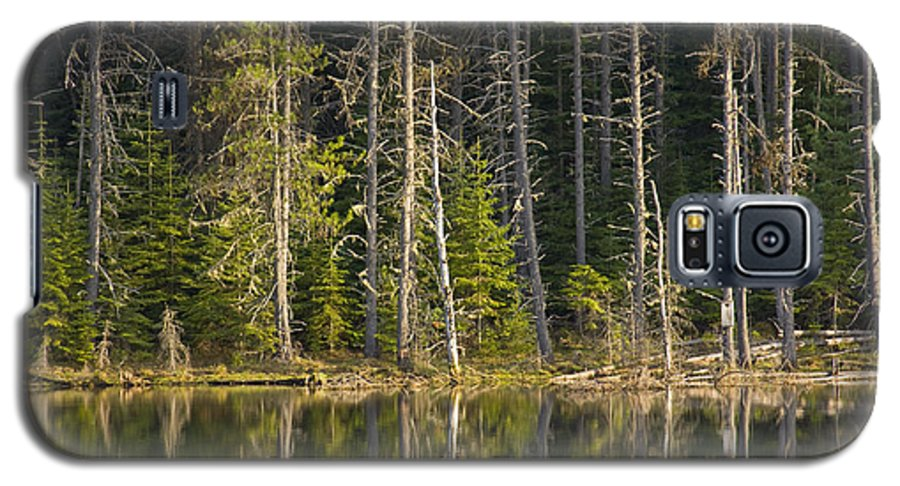 Trees Galaxy S5 Case featuring the photograph Moose Creek Reservoir by Idaho Scenic Images Linda Lantzy