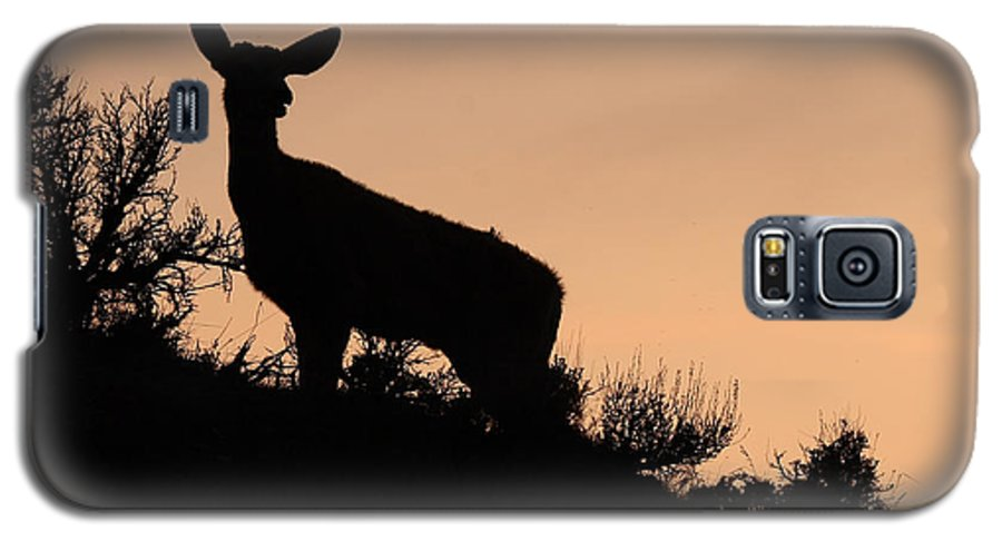 Deer Galaxy S5 Case featuring the photograph Mule Deer Silhouetted Against Sunset Ridge by Max Allen
