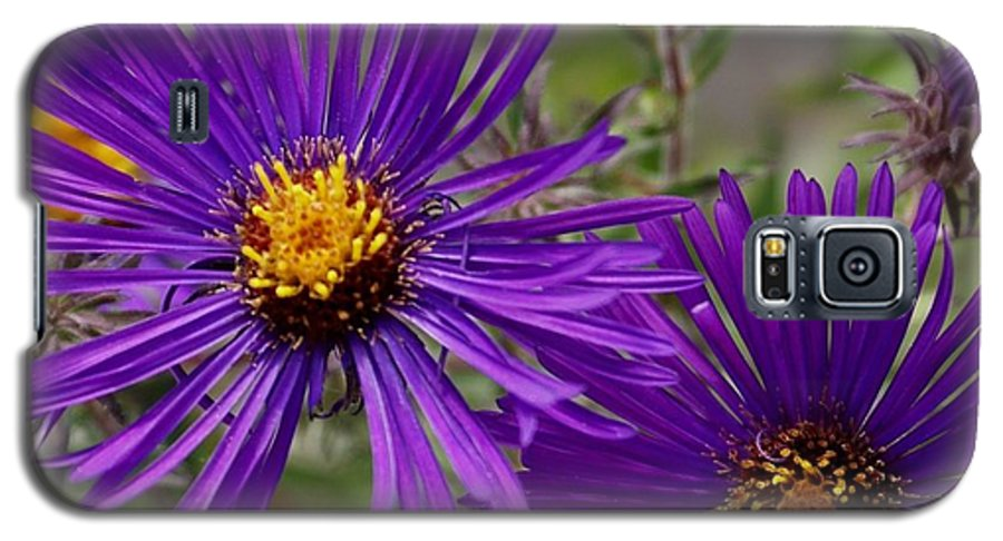 Plant Galaxy S5 Case featuring the painting My Purple Ways by Debbie May