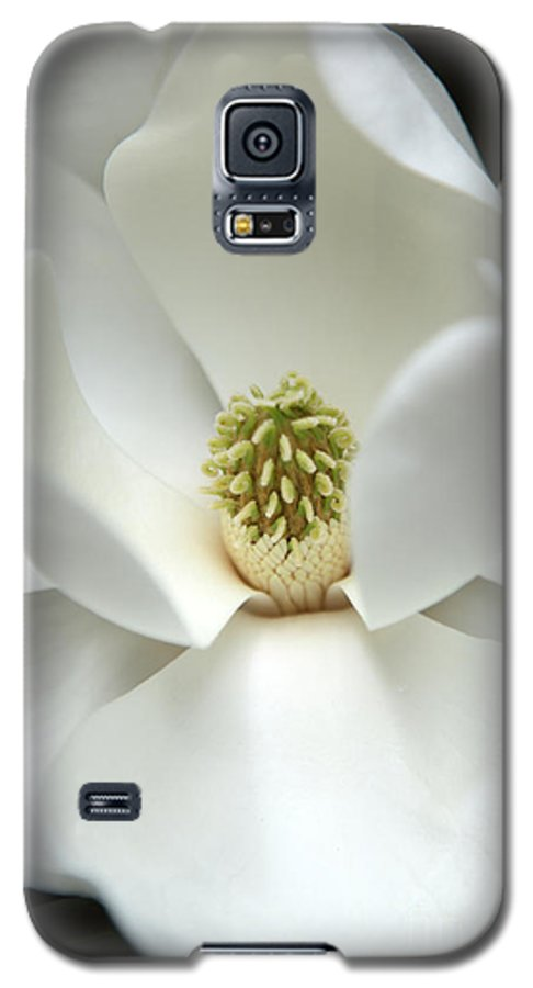 Magnolia Galaxy S5 Case featuring the photograph Mysteriously by Amanda Barcon