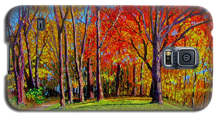 Trees Autumn Hill Grass Sunshine Shadows Sky Colors Path Galaxy S5 Case featuring the painting Nashville North by Stan Hamilton