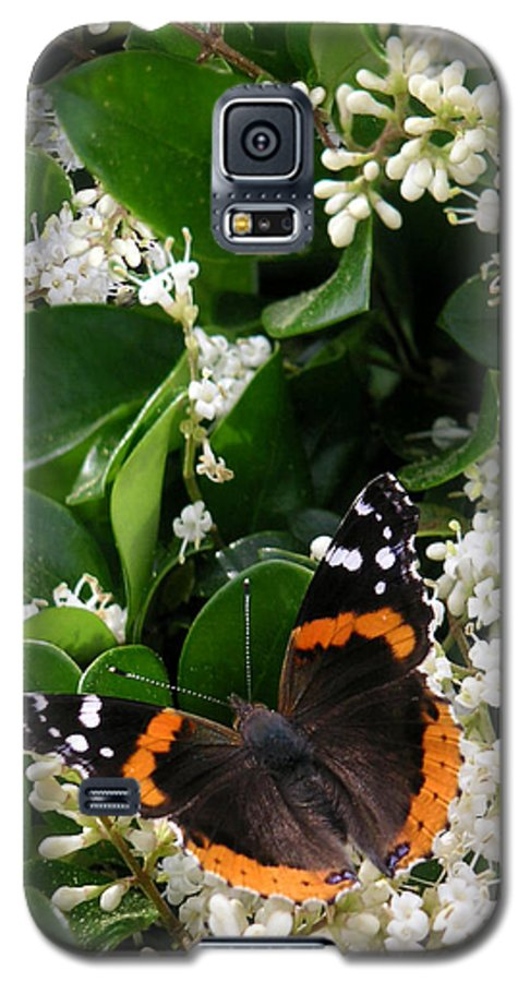 Nature Galaxy S5 Case featuring the photograph Nature In The Wild - A Sweet Stop by Lucyna A M Green