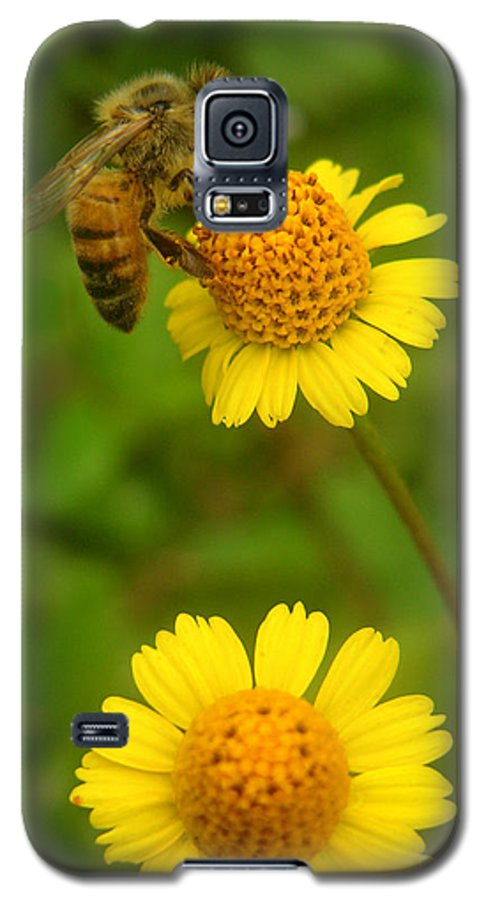Nature Galaxy S5 Case featuring the photograph Nature In The Wild - Hanging In There by Lucyna A M Green