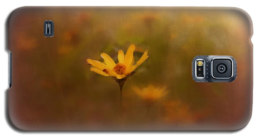 Nature Galaxy S5 Case featuring the photograph Nature by Linda Sannuti