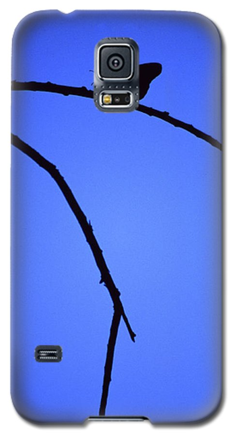 Nature Galaxy S5 Case featuring the photograph Natures Elegance by Randy Oberg