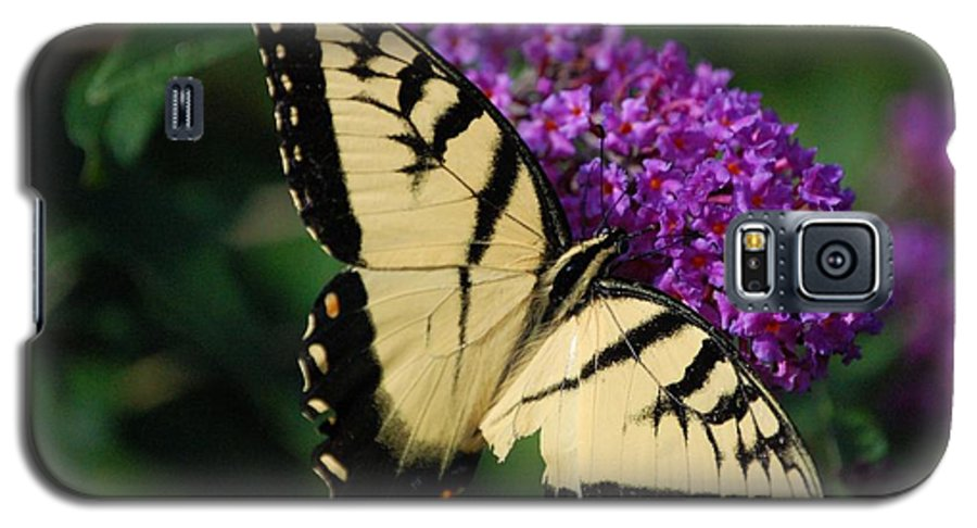 Butterfly Galaxy S5 Case featuring the photograph Nothing Is Perfect by Debbi Granruth