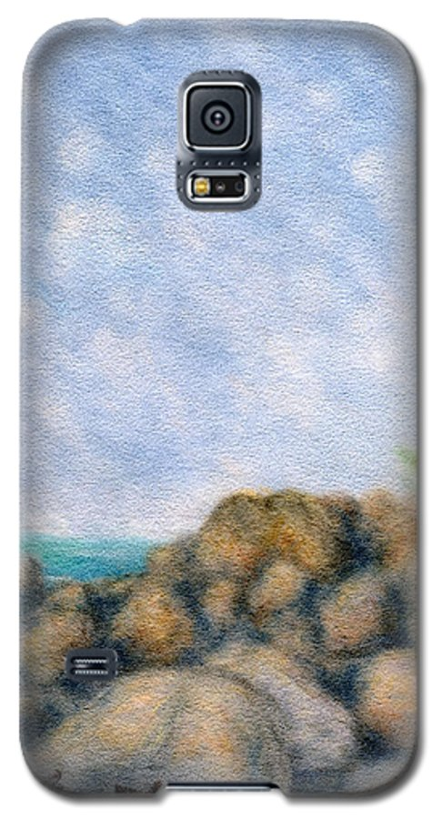 Rainbow Colors Pastel Galaxy S5 Case featuring the painting On The Rocks by Kenneth Grzesik