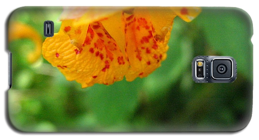 Flower Galaxy S5 Case featuring the photograph Orange Flower by Melissa Parks