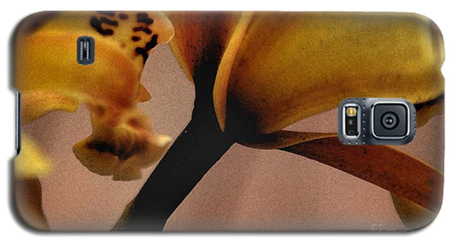 Orchid Galaxy S5 Case featuring the photograph Orchid Yellow by Michael Ziegler