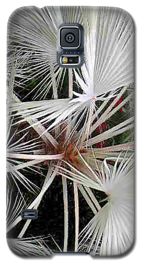 Nature Galaxy S5 Case featuring the photograph Palm Wonderful by Lucyna A M Green