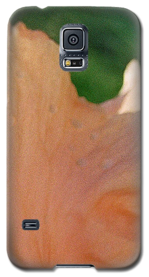 Abstract Galaxy S5 Case featuring the photograph Panel Three From Iris by Steve Karol