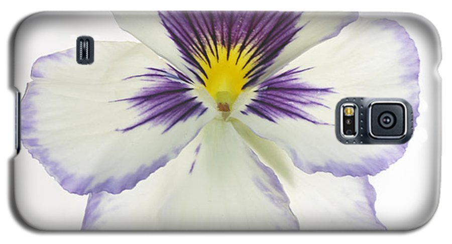 Pansy Genus Viola Galaxy S5 Case featuring the photograph Pansy 2 by Tony Cordoza
