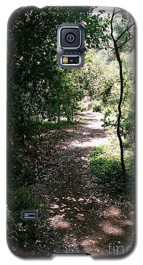 Path Galaxy S5 Case featuring the photograph Path by Dean Triolo