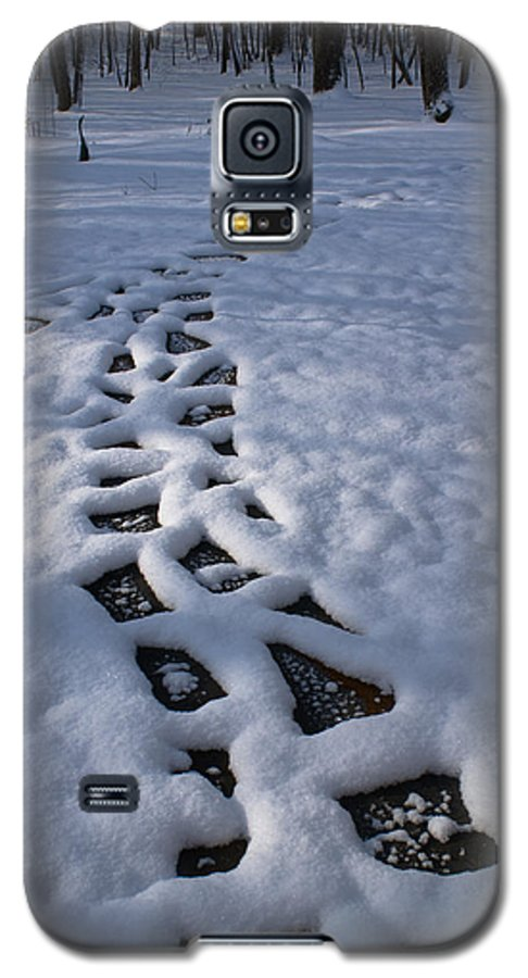 Path Galaxy S5 Case featuring the photograph Path by Douglas Barnett