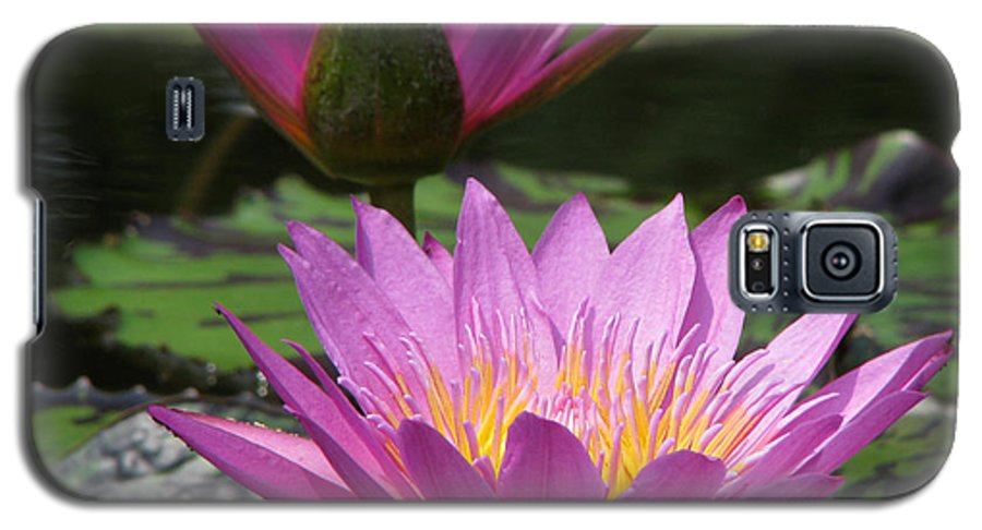 Lillypad Galaxy S5 Case featuring the photograph Peaceful by Amanda Barcon