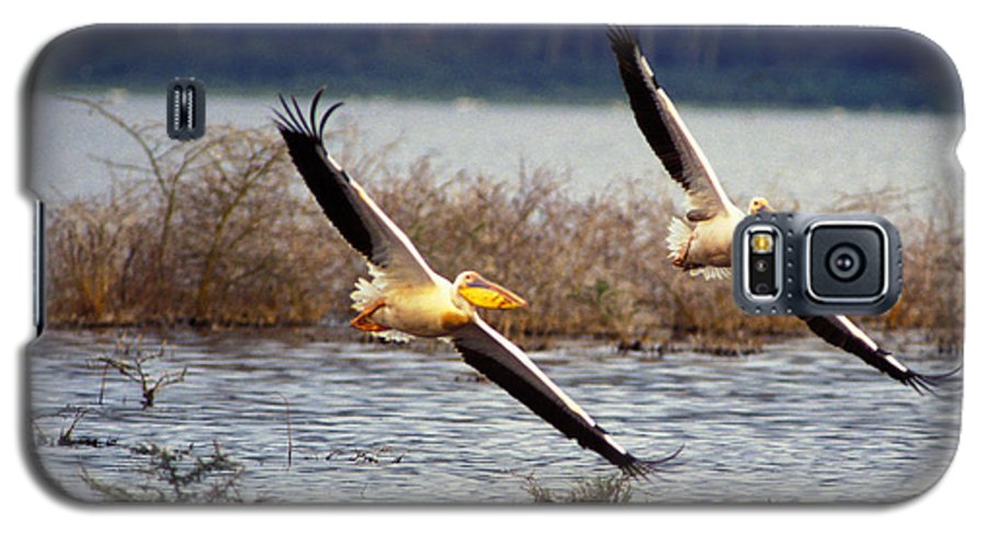 Birds Galaxy S5 Case featuring the photograph Pelicans In Flight by Carl Purcell