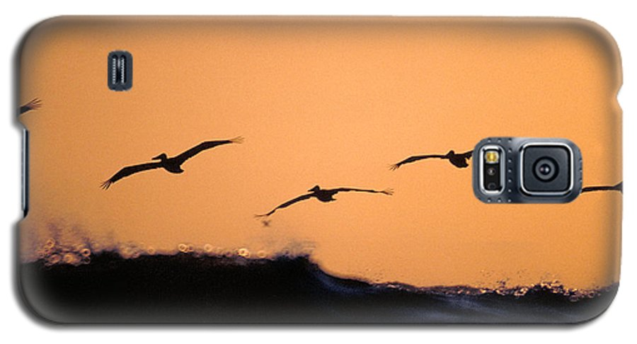 Pelicans Galaxy S5 Case featuring the photograph Pelicans Over The Pacific by Michael Mogensen