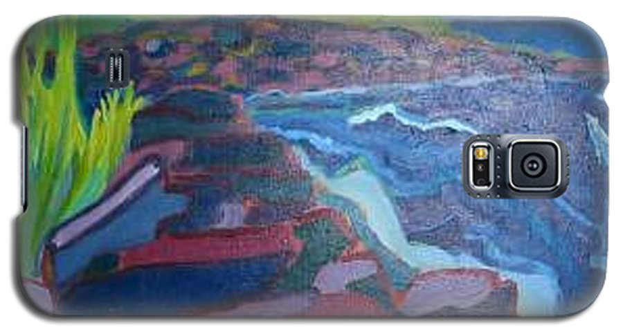 Ocean Galaxy S5 Case featuring the painting Pemaquid Cliffs by Debra Bretton Robinson