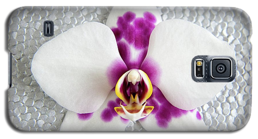 Nature Galaxy S5 Case featuring the photograph Phalaenopsis Yu Pin Panda by Julia Hiebaum