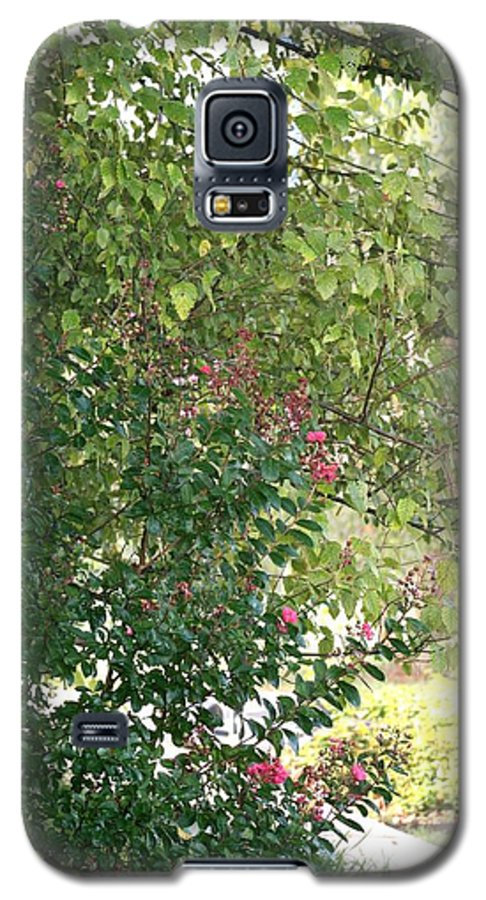 Path Galaxy S5 Case featuring the photograph Pink And Green Path by Nadine Rippelmeyer