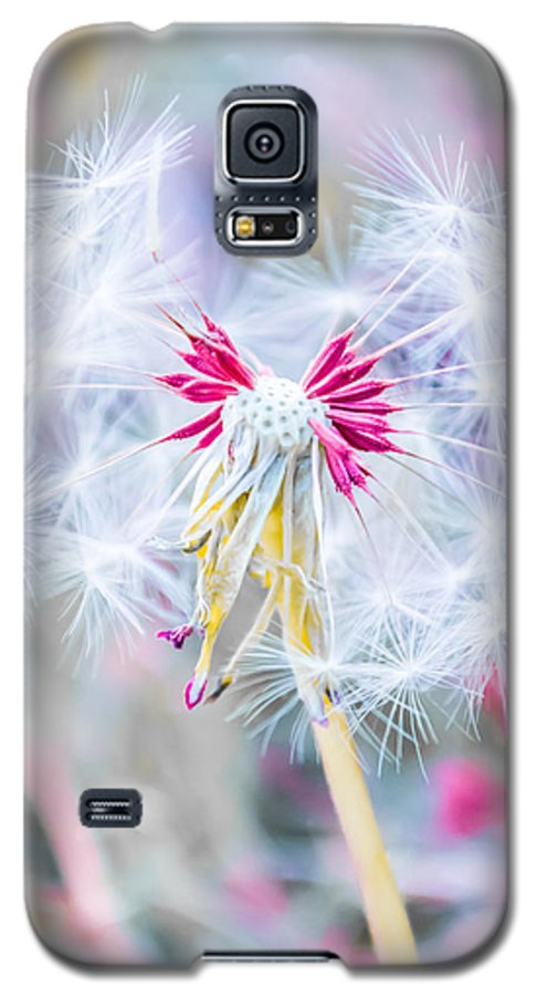 Pink Galaxy S5 Case featuring the photograph Pink Dandelion by Parker Cunningham