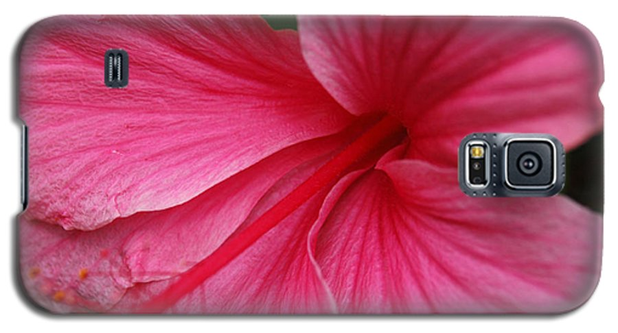 Pink Galaxy S5 Case featuring the photograph Pink Hibiscus by Kathy Schumann