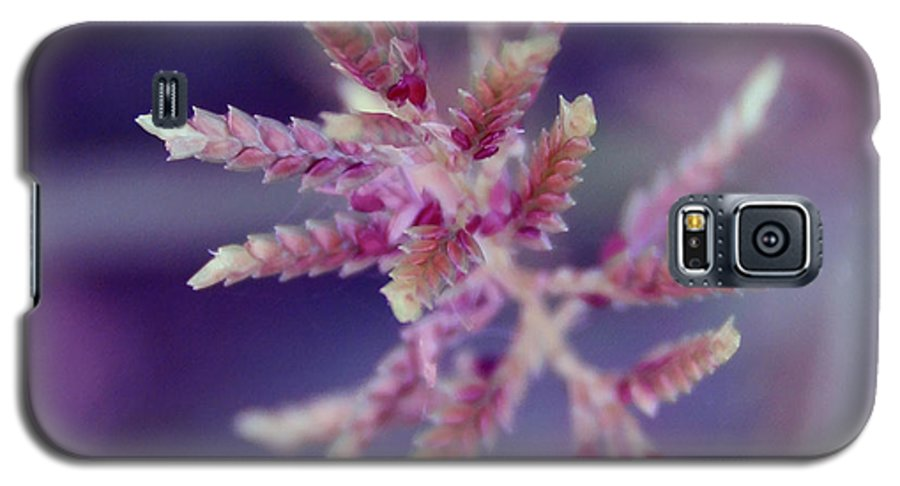 Nature Galaxy S5 Case featuring the photograph Pink Weed by Linda Sannuti
