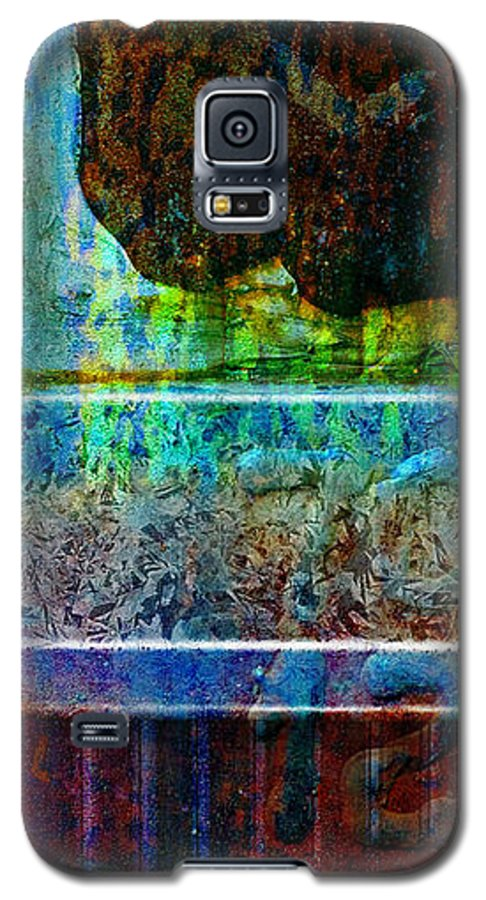 Pi Galaxy S5 Case featuring the photograph piNsky by Skip Hunt
