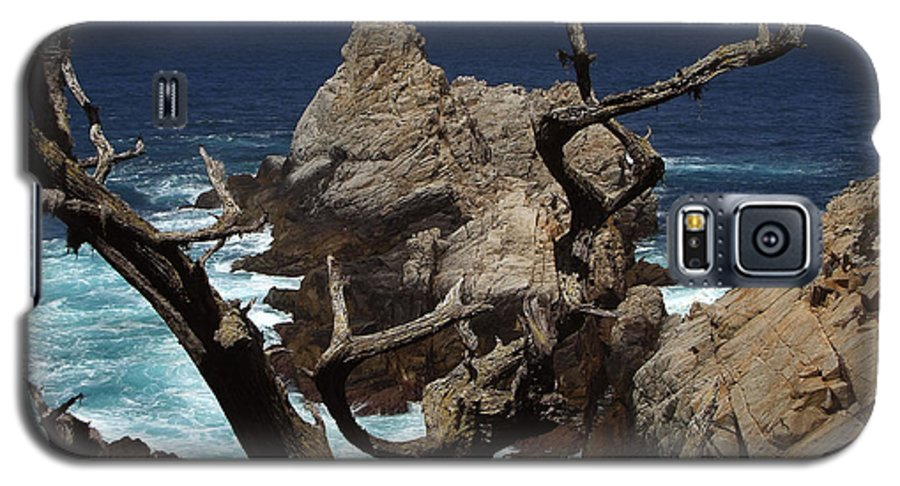 Carmel Galaxy S5 Case featuring the photograph Point Lobos Rocks And Branches by Charlene Mitchell