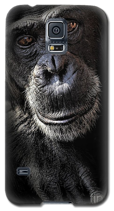 Chimp Galaxy S5 Case featuring the photograph Portrait Of A Chimpanzee by Sheila Smart Fine Art Photography