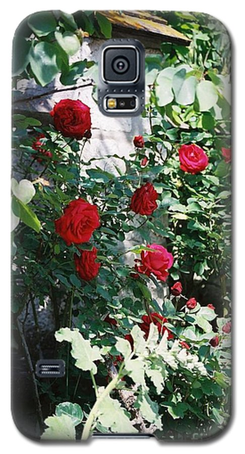 Floral Galaxy S5 Case featuring the photograph Provence Red Roses by Nadine Rippelmeyer