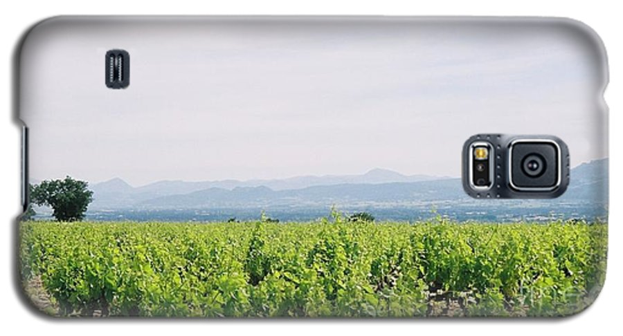 France Galaxy S5 Case featuring the photograph Provence Spring Vineyard by Nadine Rippelmeyer