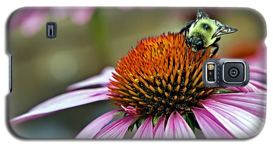 Macro Galaxy S5 Case featuring the photograph Purple Cone Flower And Bee by Al Mueller